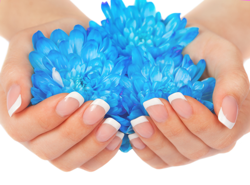 French manicured hands holding blue flowers